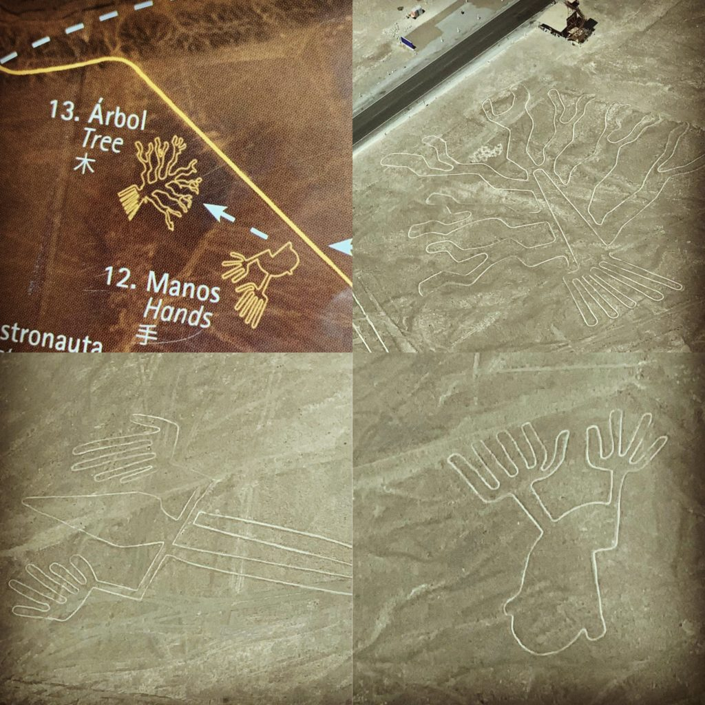Image of Tree and Hands found in the Nazca Lines