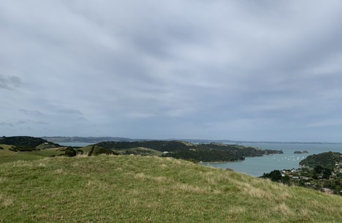 Image of Waiheke Island in New Zealand